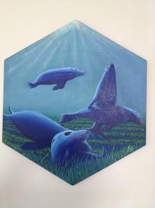 Seals at Play